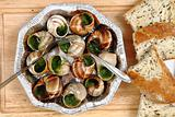 snails - french gourmet food