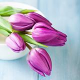Bunch of purple tulips in a bowl