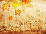 grunge abstract fall background