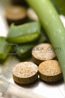 aloe vera plant with pills - herbal medicine