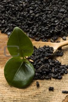 Fresh and dried tea