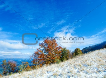 First winter snow and autumn colorful foliage on mountainside