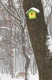 Birdhouse and bench in winter