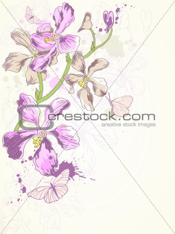 background with violet orchids