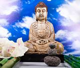 Buddha statue in a meditation