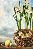 Nest of eggs with flowers for Easter