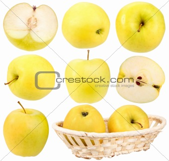 Abstract set of fresh yellow apples