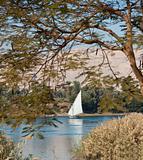 Traditional sailing felluca on the Nile