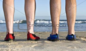 Calves and feet on the beach