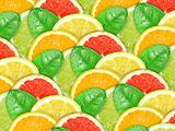 Background with motley citrus slices and green leaf