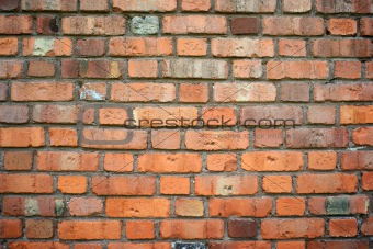 Brick wall. Background
