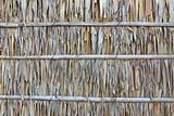 Palm leaf wall texture