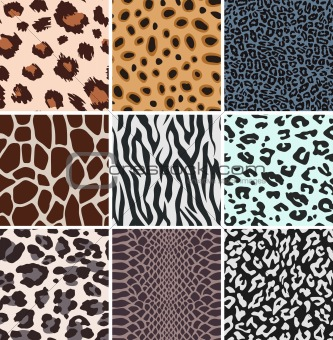 abstract african animal skin pattern