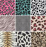 animal skin swatch pattern