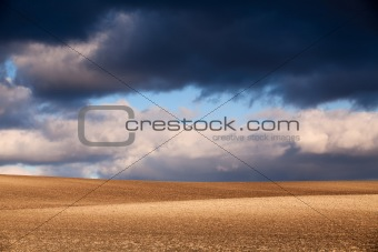Empty field