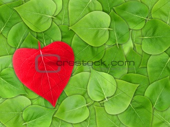 Abstract Valentine background with leaf