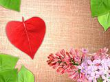 Valentine background with flowers and leaf