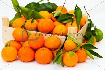 box full of fresh mandarin with green leaves