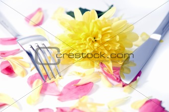 fork and knife isolated with dahlia and rose petals