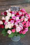 Red, White and Pink roses in Metal Bucket in French Market.