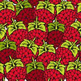 Raspberry seamless pattern
