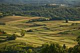 Idyllic green valley natual scenery