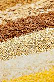 Various grains close up