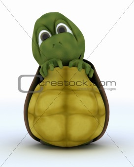Tortoise Caricature Hiding in Their Shell
