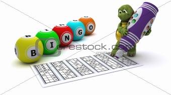Tortoise playing bingo
