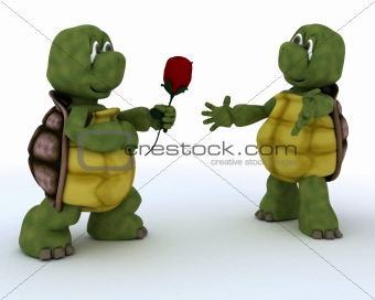 tortoise with romantic gift