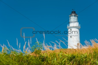 Dongju Matsu Lighthouse Tall Grass Foreground