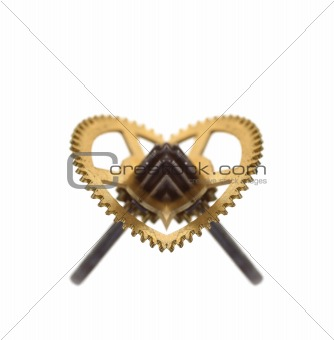 cogwheel like heart