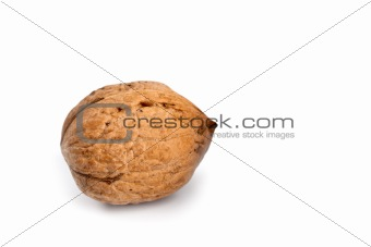 single fresh walnut