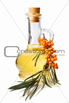bottle with oil and a branch with berries of sea buckthorn