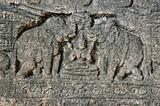 elephants on ruins Polonnaruwa