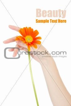 Beauty hands and flower