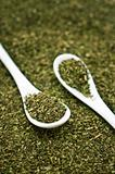 Oregano Spoon