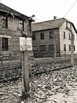 Auschwitz alert