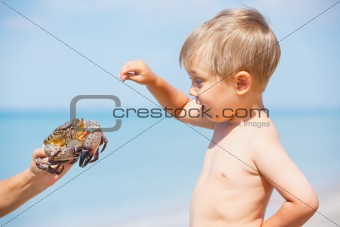Young boy plaing with crab