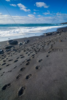 Exotic beach with black sand and footprints
