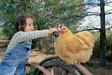 Girl feeding grapes to a chicken