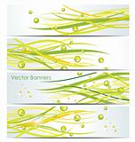 Green lines. Abstract vector background