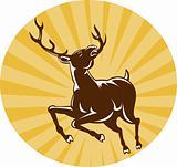 stag deer jumping