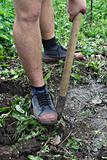 Loosing the soil