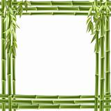 bamboo2(0).jpg