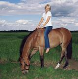 Woman on horse in field