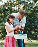 Girl and grandfather with basket of fruit