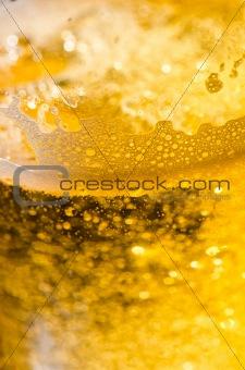 beer in macro