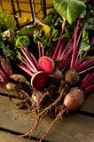 Organic Beetroot