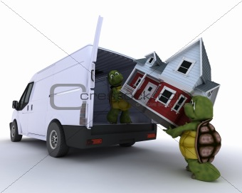 tortoises loading a house into a house into a van